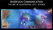 Orange County Biodesign Life Science Illustration 2012
